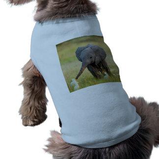 Baby Elephant and Birds Sleeveless Dog Shirt