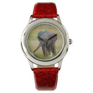 Baby Elephant and Birds Wristwatches
