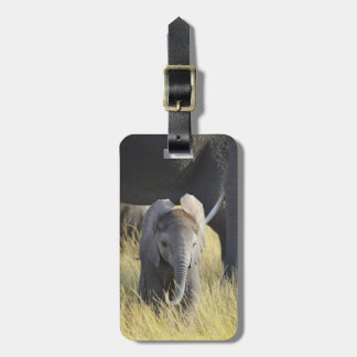 Baby Elephant Luggage Tag