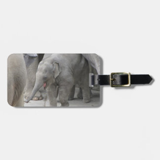 BABY ELEPHANT LUGGAGE TAG
