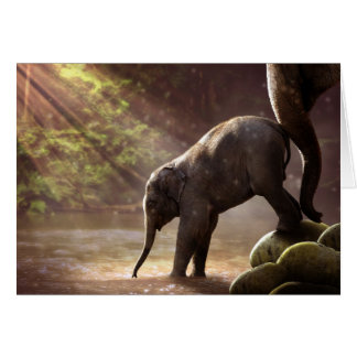 Baby Elephant's First Bath Blank Card