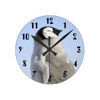 Baby Emperor Penguin, Snow Hill Island Round Clock