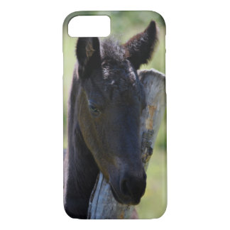 Baby friesian foal iPhone 7 case