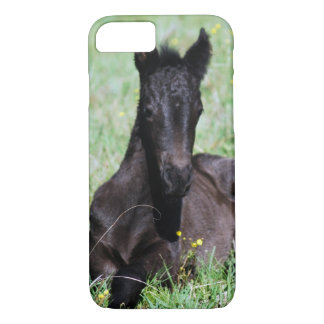Baby friesian foal lying down iPhone 7 case