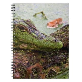 """Baby Gator"" Notebook"