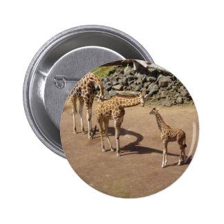 Baby Giraffe and Giraffe Family 6 Cm Round Badge