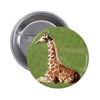Baby Giraffe Pin