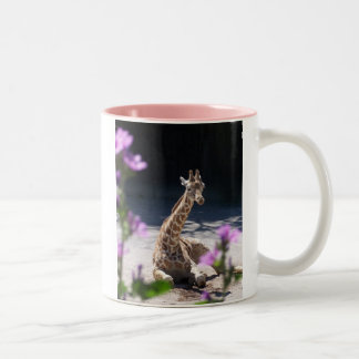 baby giraffe coffee mugs
