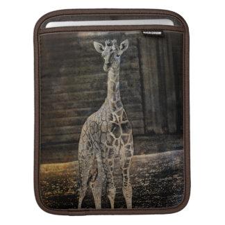 Baby Giraffe iPad Sleeve
