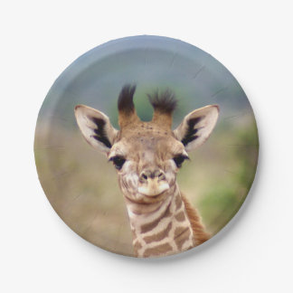 "Baby giraffe picture, Kenya, Africa | 7"" Paper Plate"