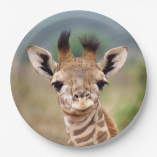 "Baby giraffe picture, Kenya, Africa | 9"" Paper Plate"