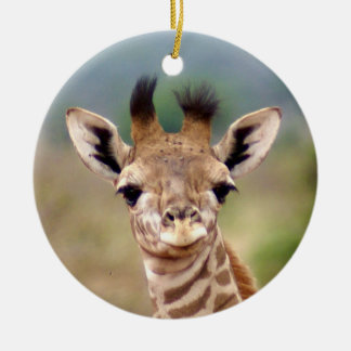 Baby giraffe picture, Kenya, Africa   Ceramic Ornament