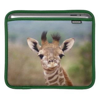Baby giraffe picture, Kenya, Africa | iPad Sleeve