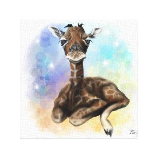Baby Giraffe Sitting Canvas