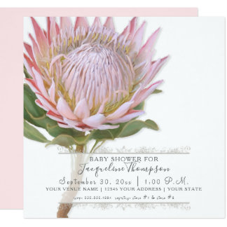 Baby Girl Shower Modern Elegant King Protea Flower Card