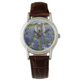 Baby Goat Bluebonnet Ladies Watch