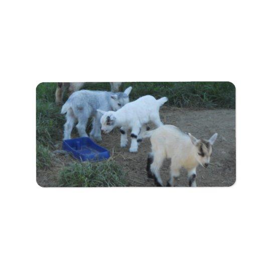 Baby Goat Family Address Label