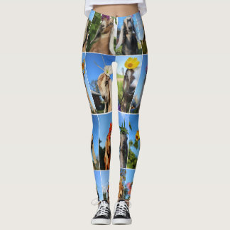 Baby Goat Leggings