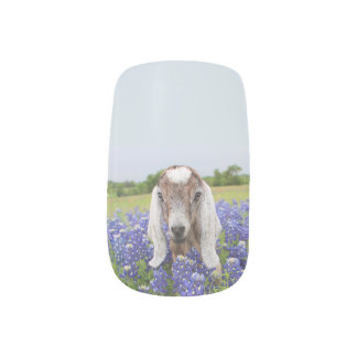 Baby Goat Nail Wraps