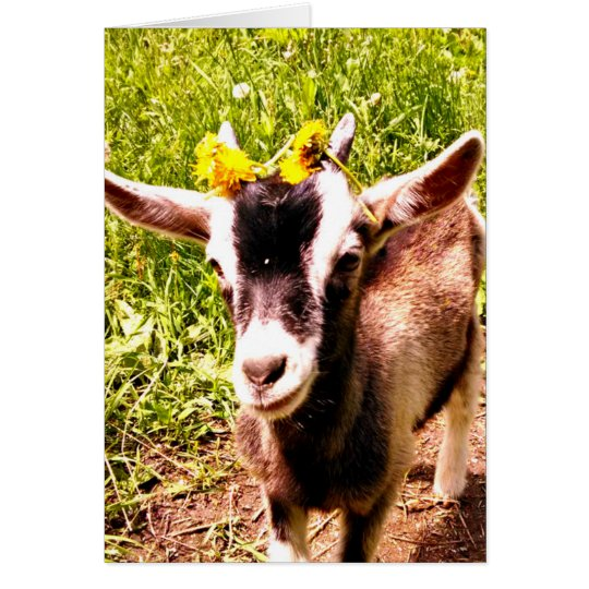 Baby Goat with Flowers - Blank Card
