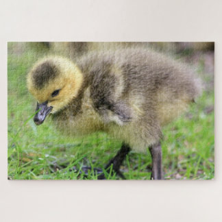 Baby Goose Jigsaw Puzzle