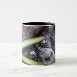 Baby gorilla of Rwanda Africa Two-Tone Coffee Mug