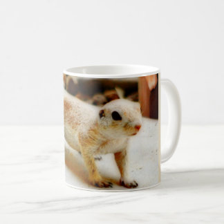 Baby Ground Squirrel in Orion Mug