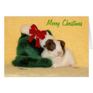 Baby Guinea Pig Merry Christmas Card