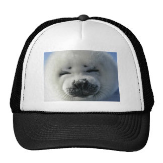Baby Harp Seal Hat