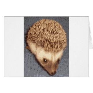 baby hedgehog card