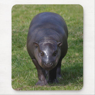 Baby Hippo Mousemat