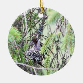 Baby Hummingbirds in a Nest Ceramic Ornament