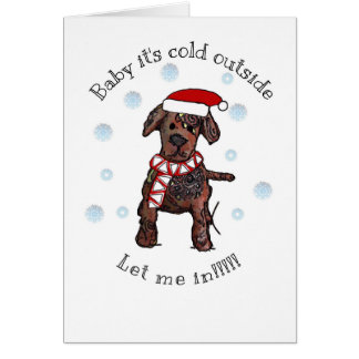 Baby it's cold outside, Let me in Card
