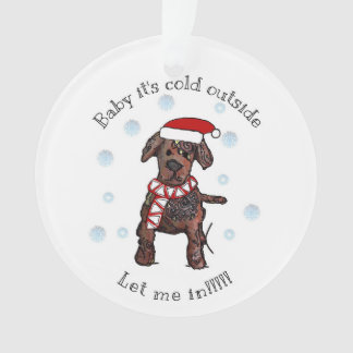 Baby it's cold outside, LET ME IN! Labrador Ornament