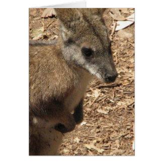 Baby Kangaroo Greeting Card