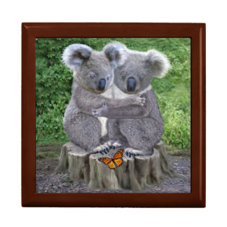 Baby Koala Bear Huggies Gift Box