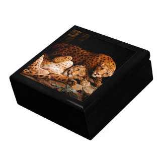 Baby Leopard Cubs Wildlife Animals Gift Box