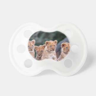 Baby Lion Cubs Pacifier
