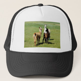 Baby Llama huddle Trucker Hat