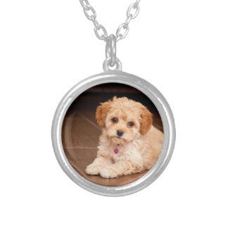 Baby Maltese poodle mix or maltipoo puppy dog Silver Plated Necklace