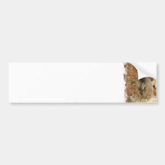 Baby Meerkat Bumper Sticker
