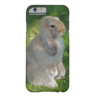 Baby Minilop Rabbit iPhone 6 Case