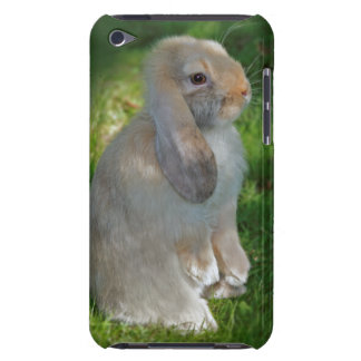 Baby Minilop Rabbit iPod Touch Case