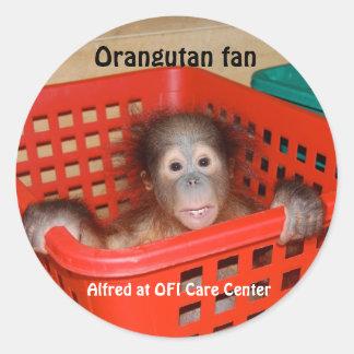 Baby Orangutan Alfred Classic Round Sticker