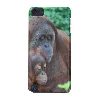 Baby Orangutan with Mother iTouch Case iPod Touch 5G Case