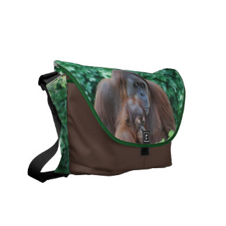 Baby Orangutan with Mother Messenger Bag