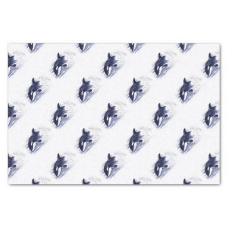 Baby Orca Jump Tissue Paper