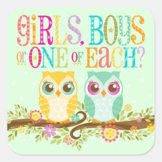 Baby Owl Twins - Gender Reveal / Unknown Sticker