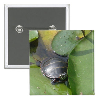 Baby Painted Turtle on Lilypad Items Pinback Buttons