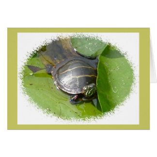 Baby Painted Turtle on Lilypad Items Greeting Card
